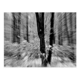 Falta de definición de maderas del invierno tarjeta postal