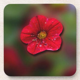 Falta de definición roja de la flor posavasos de bebida