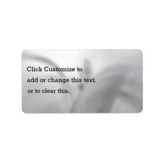 Falta de definición temática, una imagen blanco y etiquetas de dirección