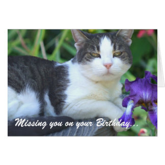 Falta de usted en su gato del cumpleaños en el jar tarjeta de felicitación