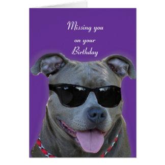 Falta de usted en su pitbull del azul del cumpleañ tarjeta de felicitación
