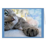 Falta de usted, humor lindo del animal del gato de felicitación