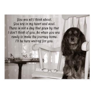 Falta de usted: Una tarjeta arrogante del perro de Postal