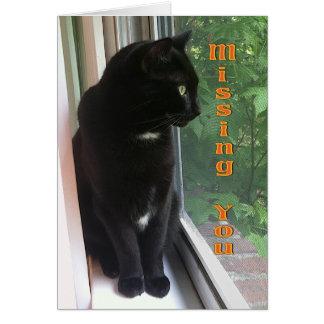 Faltándole gato negro del gatito en la ventana tarjeta de felicitación