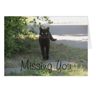 Faltándole gato negro en un jardín tarjeta pequeña