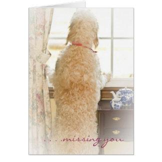 Faltándole - tarjeta - perro casero