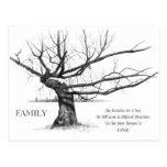 FAMILIA: Arte del lápiz: Árbol viejo Gnarly: Lazos Postal