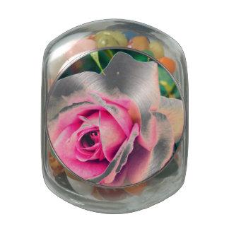 Familia color de rosa rosada frascos cristal