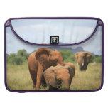 Familia de elefantes funda macbook pro