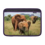 Familia de elefantes funda para macbook air