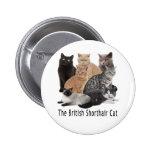 Familia de gato Británicos Shorthair Pin