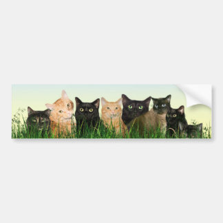Familia de gato pegatina para auto