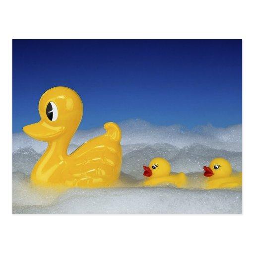 Familia de goma del pato postales