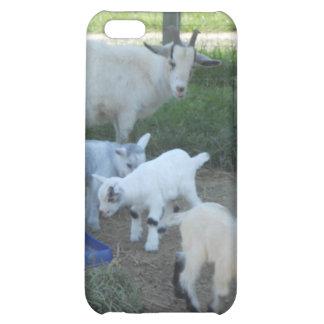 Familia de la cabra del bebé