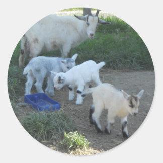 Familia de la cabra del bebé pegatina redonda