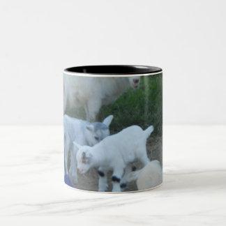 Familia de la cabra del bebé taza de dos tonos