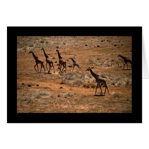Familia de la jirafa tarjeta