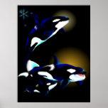 Familia de la orca posters