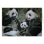 Familia de la panda felicitaciones