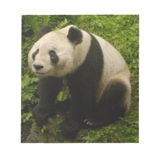 Familia de la panda gigante (melanoleuca del Ailur Libreta Para Notas