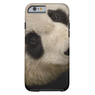 Familia de la panda gigante (melanoleuca del funda para iPhone 6 tough