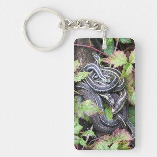 Familia de la serpiente llavero rectangular acrílico a doble cara