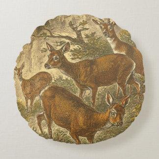 Familia de las huevas - ciervos en un bosque cojín redondo