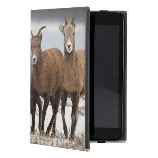 Familia de las ovejas de montaña iPad mini cárcasa