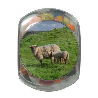 Familia de las ovejas frascos de cristal