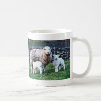 Familia de las ovejas taza básica blanca