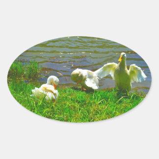Familia de los patos pegatina ovalada