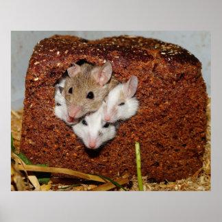 Familia de los ratones póster