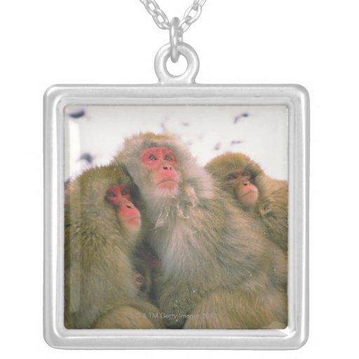 Familia de macaque japonés, Jigokudani, Pendientes Personalizados