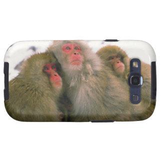 Familia de macaque japonés, Jigokudani, Galaxy SIII Cárcasa