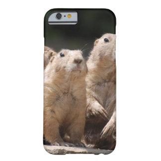 Familia de perro de las praderas funda de iPhone 6 barely there