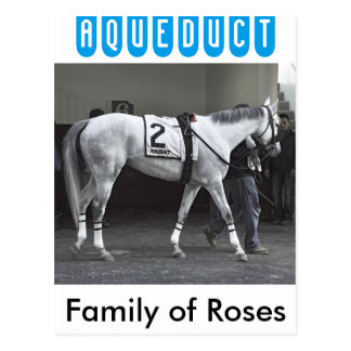 Familia de rosas postales