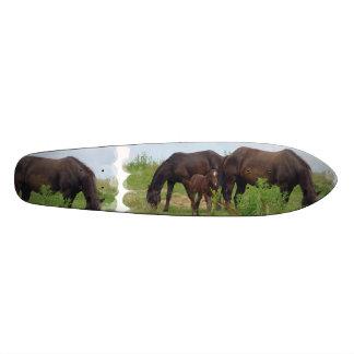 Familia del caballo monopatín personalizado