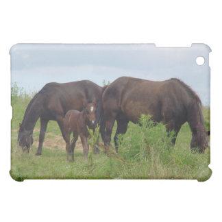 Familia del caballo que pasta el caso del iPad