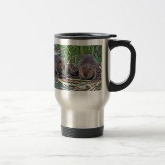 Familia del castor taza