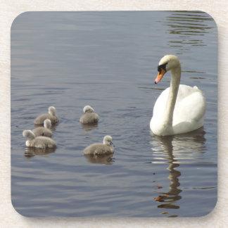 Familia del cisne con la mamá y anadones o pollos posavasos
