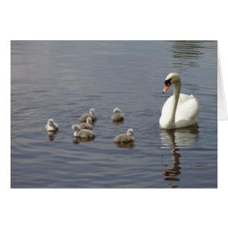 Familia del cisne en agua tarjeton