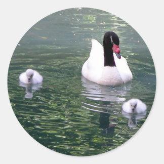 Familia del cisne etiqueta redonda