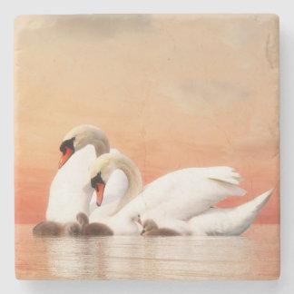 Familia del cisne por puesta del sol posavasos de piedra