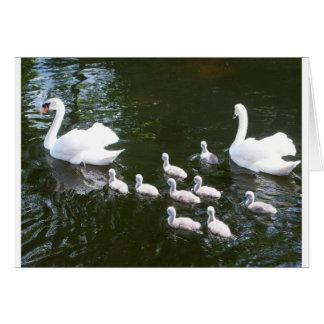 Familia del cisne tarjeta de felicitación