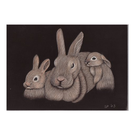 Familia del conejito póster