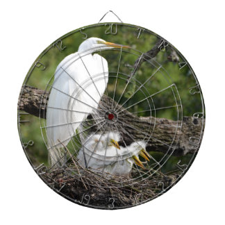 Familia del Egret nevado