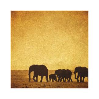 Familia del elefante impresión en lienzo estirada