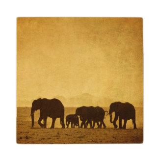 Familia del elefante posavasos de arce