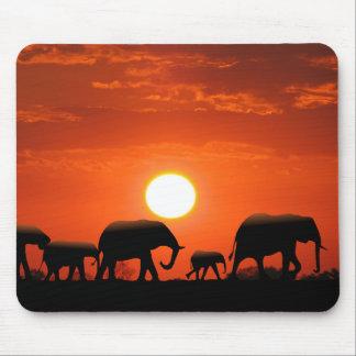 Familia del elefante alfombrillas de ratones