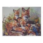 Familia del Fox Postales